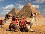Egypt – oblíbené výlety z pobřeží