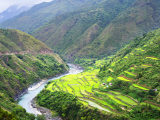 Rýžové terasy filipínských Kordiller - dílo lovců lebek
